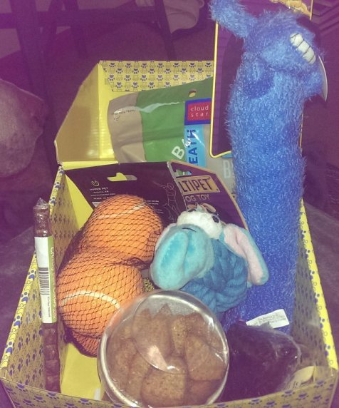 July 2015 Surprise My Pet Box